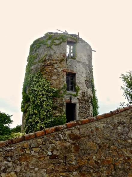 Moulin de Chappe - Port St Père